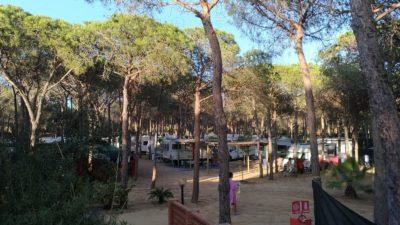 Camping-spiaggia-del-riso-villasimius-sardegna.jpeg